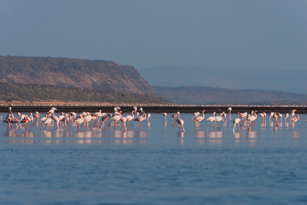 View of Lake Magadi.  Photo Courtesy of Mutua Matheka