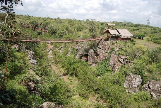 View of the suspended rope bridge at Rolf's Place in Rongai-Kiserian Valley.  Photo Courtesy