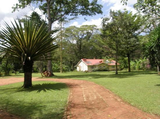 View of Rondo Retreat in Kakamega Forest Reserve.  Photo Courtesy of Trip Advisor