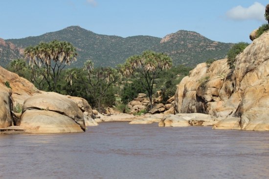 View of River Ewaso Nyiro in Shaba National Reserve.  Photo Courtesy of Standard Media