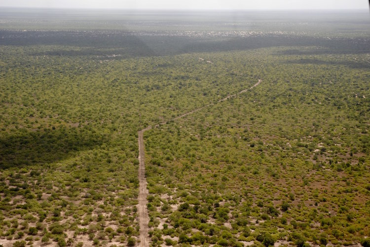 Aerial view of Hirola Ishaqbini Conservancy.  Photo Courtesy of Northern Rangelands Trust