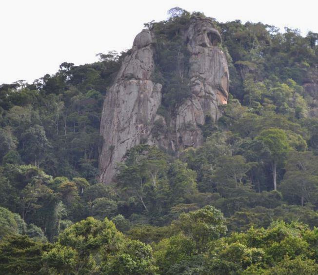 View inside the Mpogoro Forest.  Photo Courtesy of Meru Tourism
