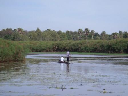 View of the Sio Siteki Swamp.  Photo Courtesy of Talk Africa