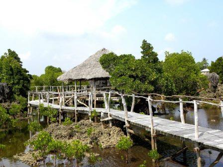 View of the coral garden as seen from Wasini Boardwalk.  Photo Courtesy