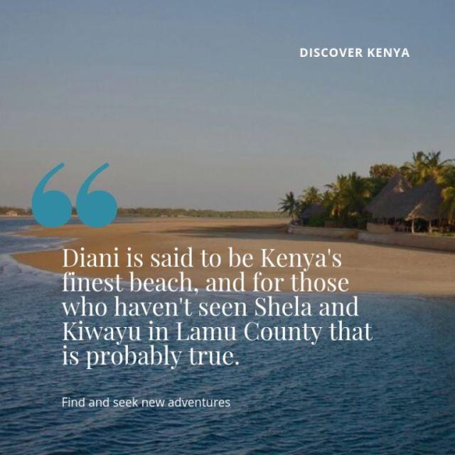 Coast, Safaris, Fauna & Flora in Kenya