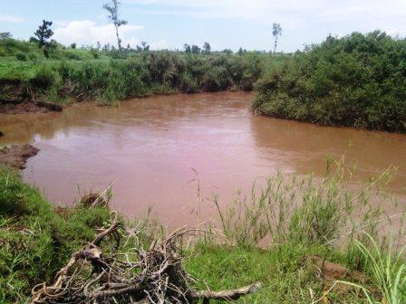 River Gucha in Nyamira.  Photo Courtesy