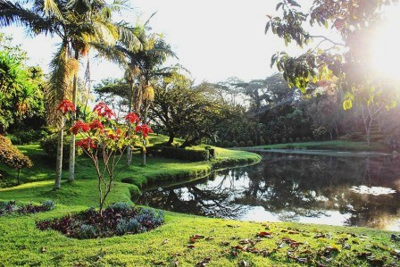 View of a section of the Kapsimotwa Gardens.  Photo Courtesy of Safari 254