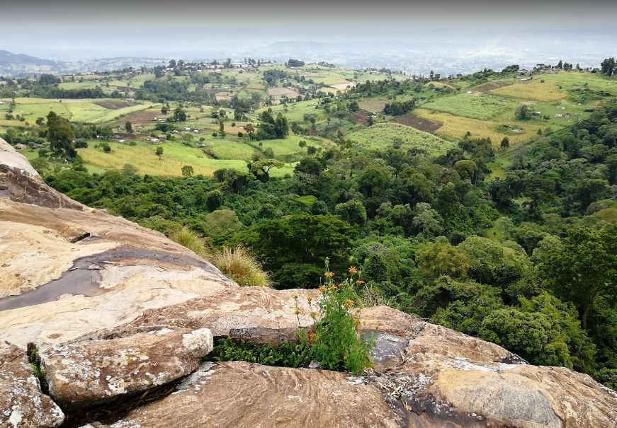 View atop the Tabolwa Rock, in Nandi North Forest.  Photo Courtesy of Edmond Kuto