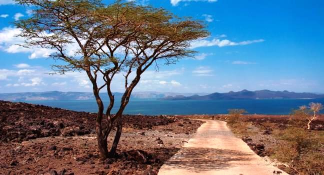 View of Lake Turkana - found in Marsabit and Turkana Counties - designated as a World Heritage Site in 1997.  Photo Courtesy