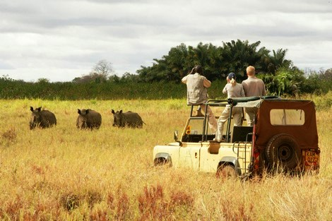 Visit Kenya: View of the Meru National Park - 10 Best Game Parks in Kenya