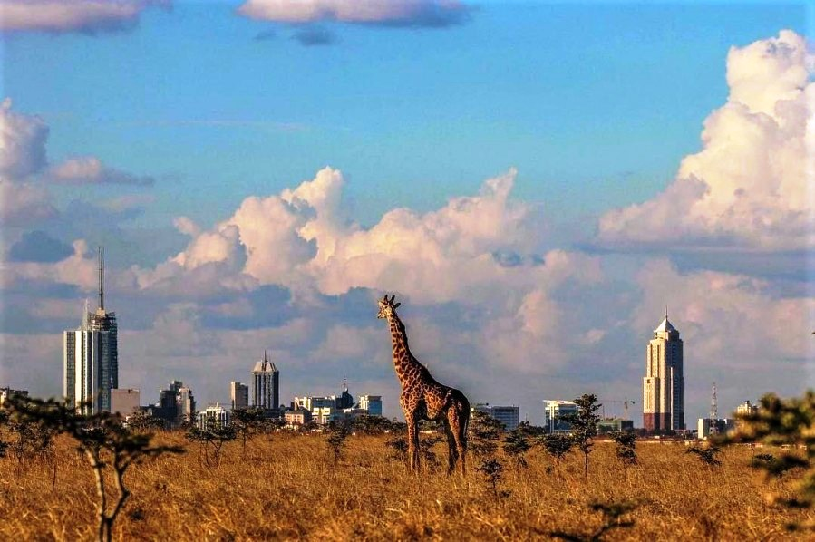 Visit Kenya: View of the Nairobi National Park - 10 Best Game Parks in Kenya