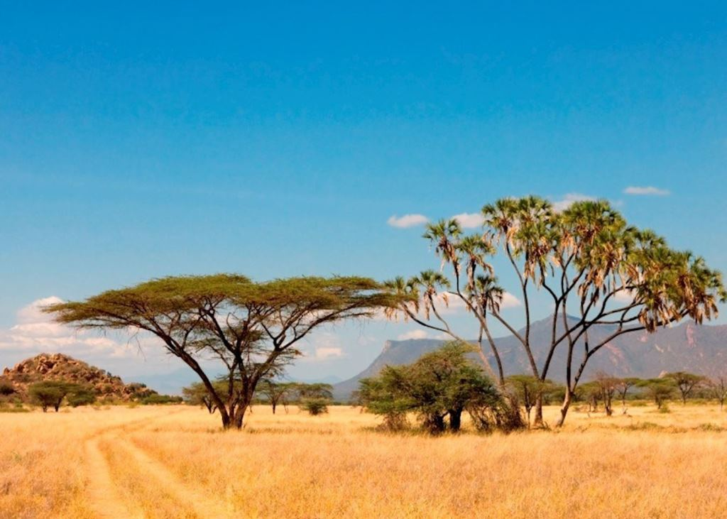 View inside Shaba National Reserve.  Photo Courtesy of Audrey Travel