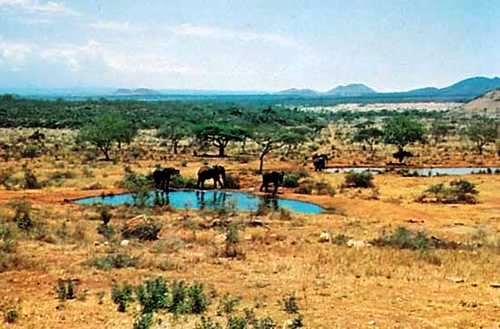 Visit Kenya: View of the Tsavos National Park - 10 Best Game Parks in Kenya