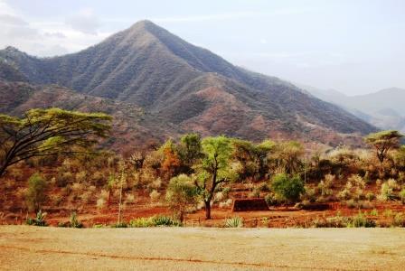 Cherangani Hills Forest Reserve