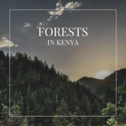 A Guide to Forest in Kenya gives comprehensive information about the major forest around Kenya. Of the area of 582,646 km2 that Kenya covers, almost 2008 km2 are covered by natural and exotic plantation forests: So the forest cover is 3.4% of the total surface area and 15% of the most fertile land.