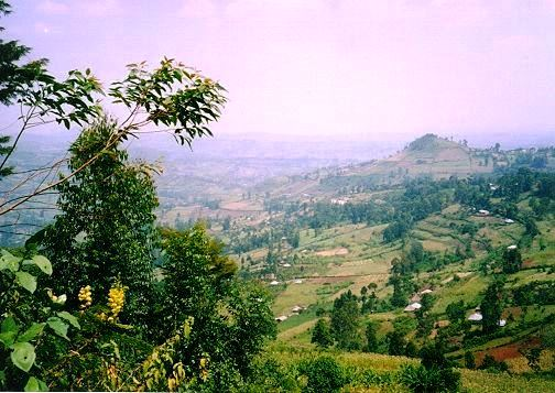 View of landscape of Kisii County.  Photo Courtesy