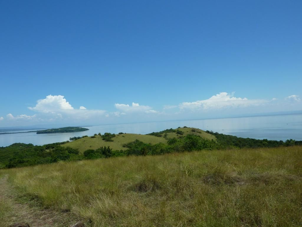 View at Ndere Island National Park.  Photo Courtesy