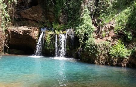 Natural pool in Ngare-Ndare Forest.  Photo Courtesy