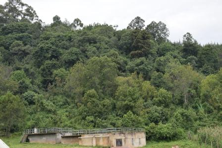 Part of Matasia Forest Station.  Image Courtesy of KFS