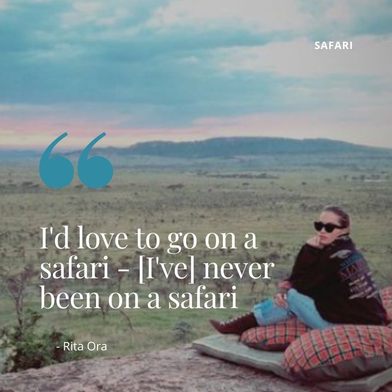 Travel Quotes - I'd love to go on a safari - [I've] never been on a safari - Rita Ora