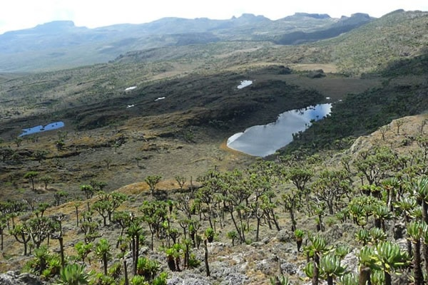 Hiking in Kenya: View inside Mount Elgon National Park.  Photo Courtesy of Primadona