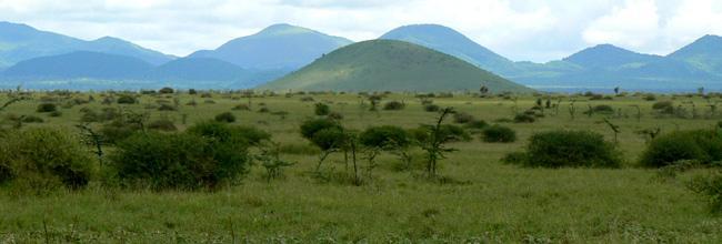 The Rippling Chyulu Hills