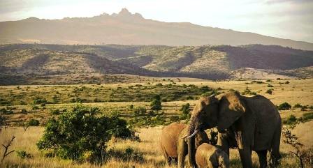 Laikipia Plateau in Laikipia County - Landmarks in Kenya.  Image Courtesy of Laikipia Org