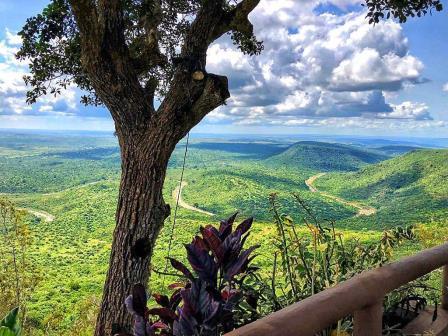 Shimba Hills National Reserve.