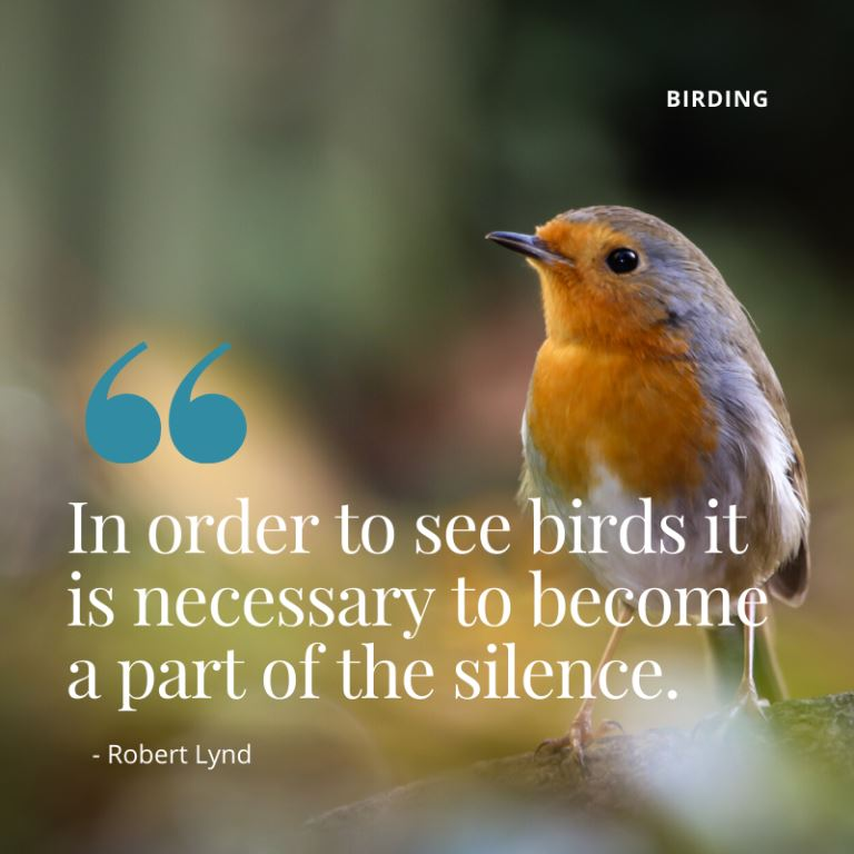 "Travel Quote - "" In order to see birds it is necessary to become a part of the silence"" - Robert Lynd - A Guide to Birding in Kenya"