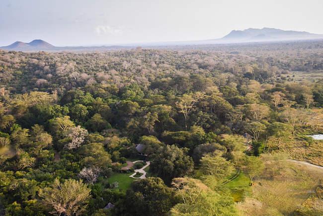 Kibwezi Forest in Makueni County. Image courtesy of Sheldrick Wildlife Trust