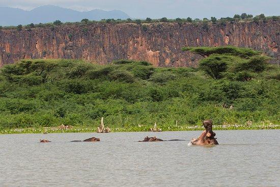 Lake Baringo National Reserve. Image Courtesy of Trip Advisor