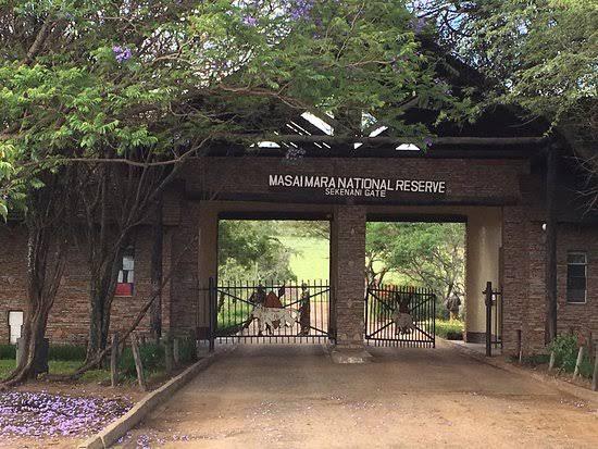 Masai Mara National Park - Sekenani Gate