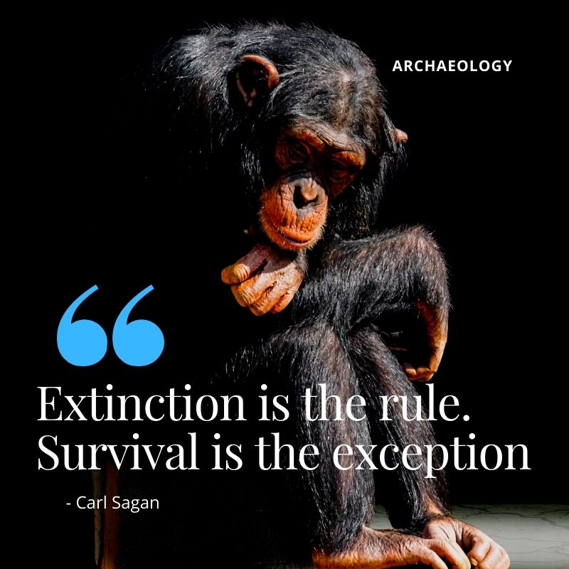 "Travel Quote - ""Extinction is the rule. Survival is the exception"" - Carl Sagan. A Guide to Archaeological Sites in Kenya"
