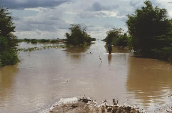 Lorian Swamp. Image courtesy of Paul Philpott