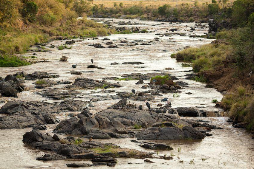 The Mara River Basin