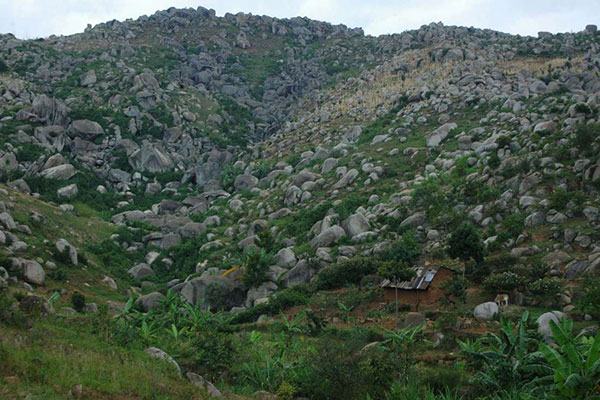 Maragoli Hills in Vihiga County