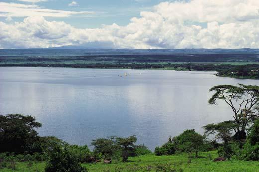Rift Valley Basin Wetlands
