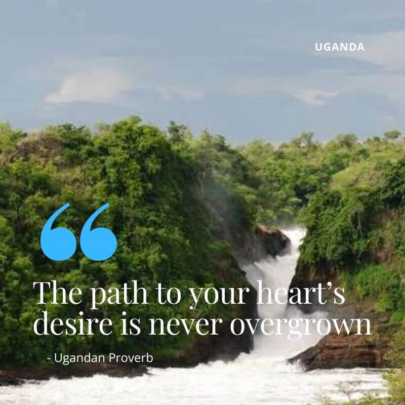 Parks in Uganda: The Pearl of Africa