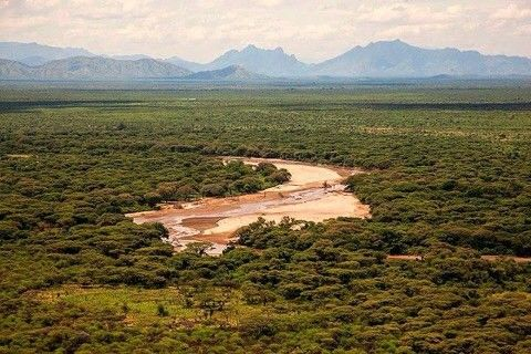 Boma National Park in South Sudan. Image Courtesy