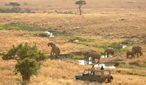 Lewa Wildlife Conservancy. Image courtesy of Ndege News - A Look into Kenya Safari Heritage
