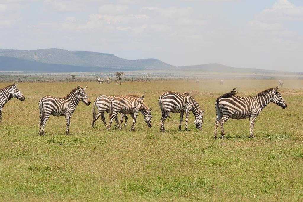 Siria Escarpment in Masai Mara. Image courtesy of Basecamp Explorer