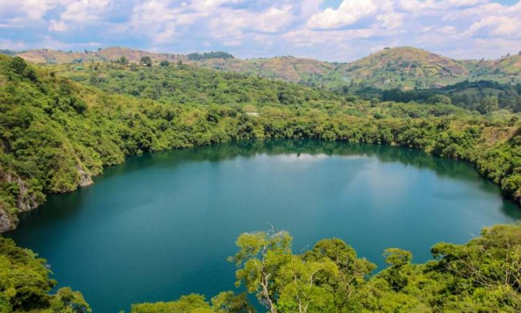Kibale National Park in Uganda. Image courtesy of Kibale National Park