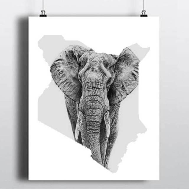 Saving Elephants in Kenya - TurnUp Kenya
