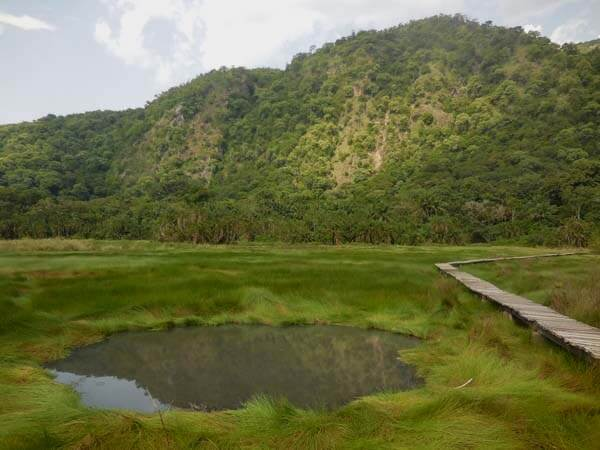 Semuliki National Park. Image courtesy of Diary of a Mzungu