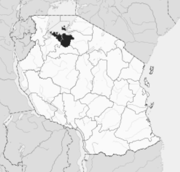 Spatial Location of Mwadui Region in Tanzania