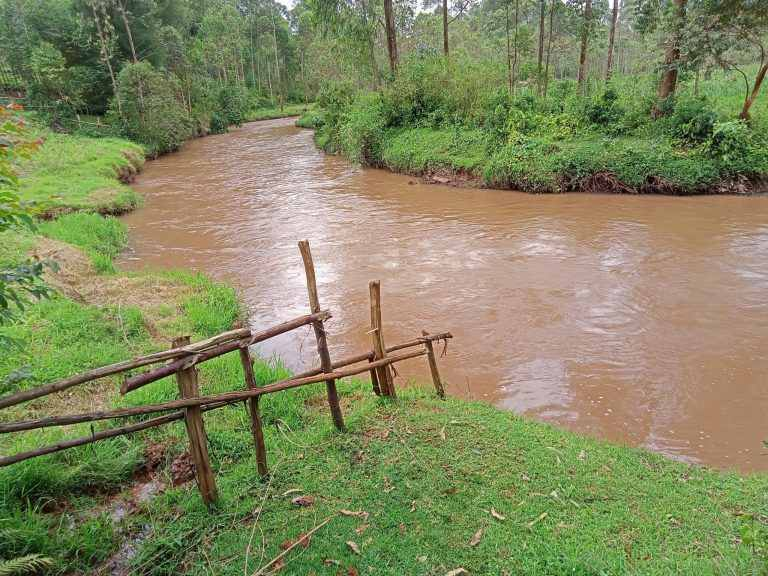 A Section of the Gucha River. Image Courtesy of Tujipange