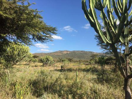 Section of Loita Plain. Image Courtesy of Garden of Eden Loita Plains