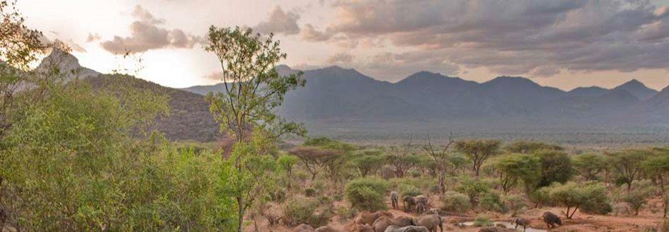 Mathews Mountain Range. Image Courtesy of Ker & Downey