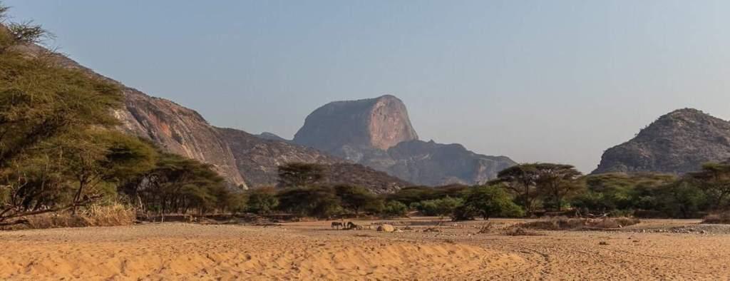 Mount Poi, Ndoto Mountains. Image Courtesy of Kampur