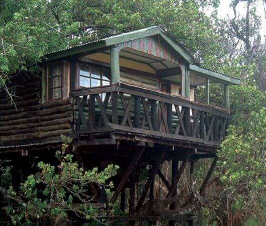 Tree House at Saiwa Swamp N. Park. Image Courtesy of Karibu Kenya